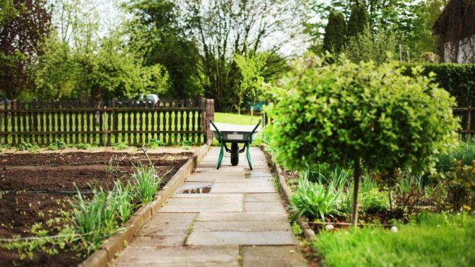 Kleingarten – Welche Gesetze gibt es?