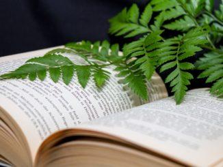 Buch Pflanze
