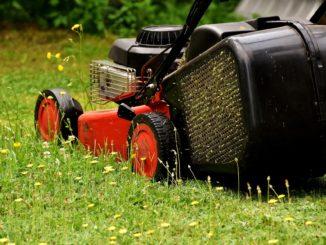 Rasenmäher mit Zündkerze
