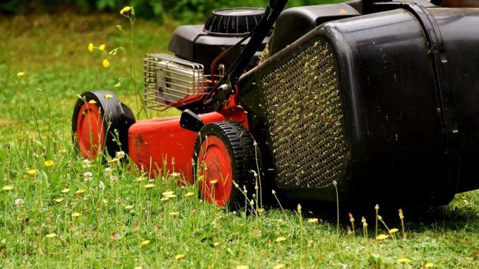 Rasenmäher bis 300 Euro liste
