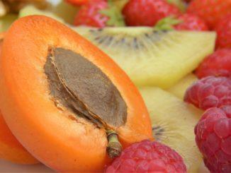 aprikosen-kern-baum