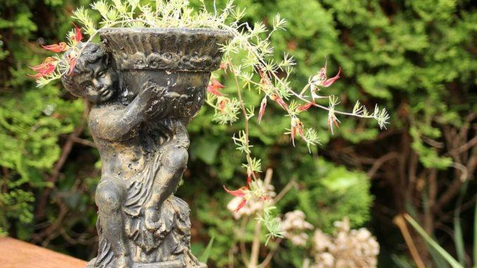 Blumenregal hoch dank eines Blumentopfs