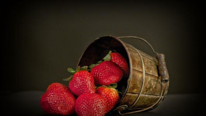 erdbeeren-im-topf-ueberwintern
