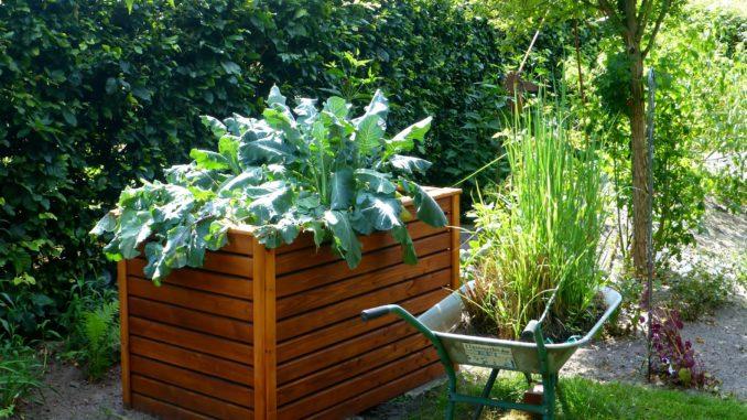 Gemeinsame Hochbeet selber bauen » Gartenrevue.de @EK_53