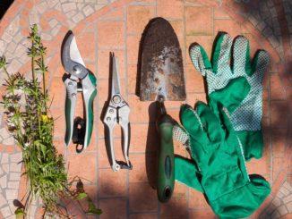 Gartenschere schleifen