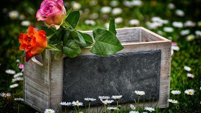 Geschenke Für Gartenfreunde Ideen Und Tipps
