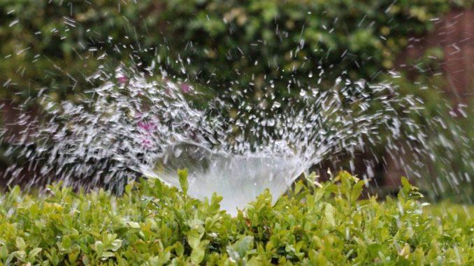 Wassersteckdose Garten
